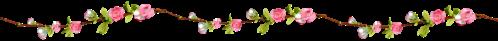 flores_png_by_parkjirimtutos-d73phhd
